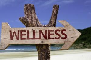 My Wellness Journey